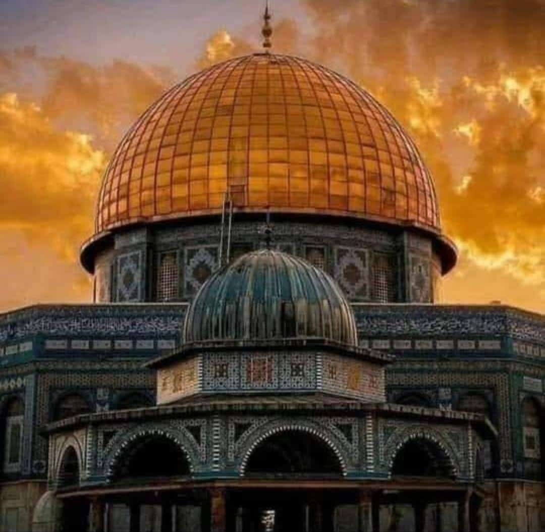 Palestine & the Outbreak of Violence